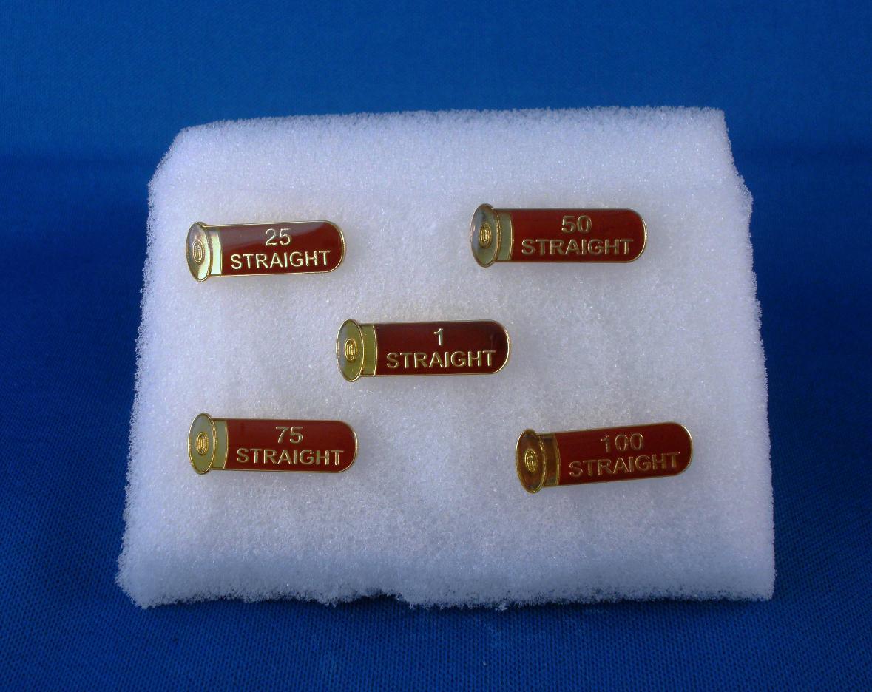 tilden trophies pins name badges